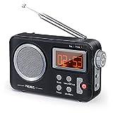 PRUNUS J-409 DAB Radio, Tragbares UKW Digitales...